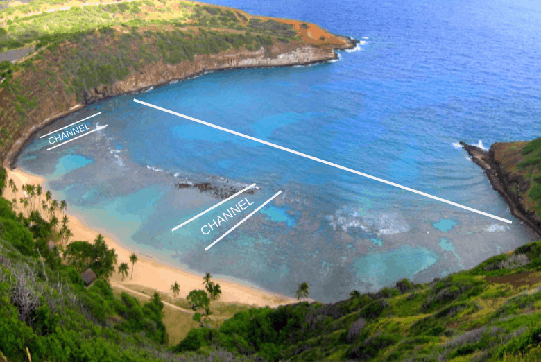 Where to snorkel in Hanauma Bay