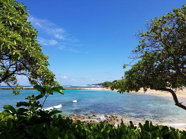 Kuilima Cove Hawaii Snorkeling
