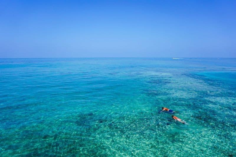 snorkeling in calm water