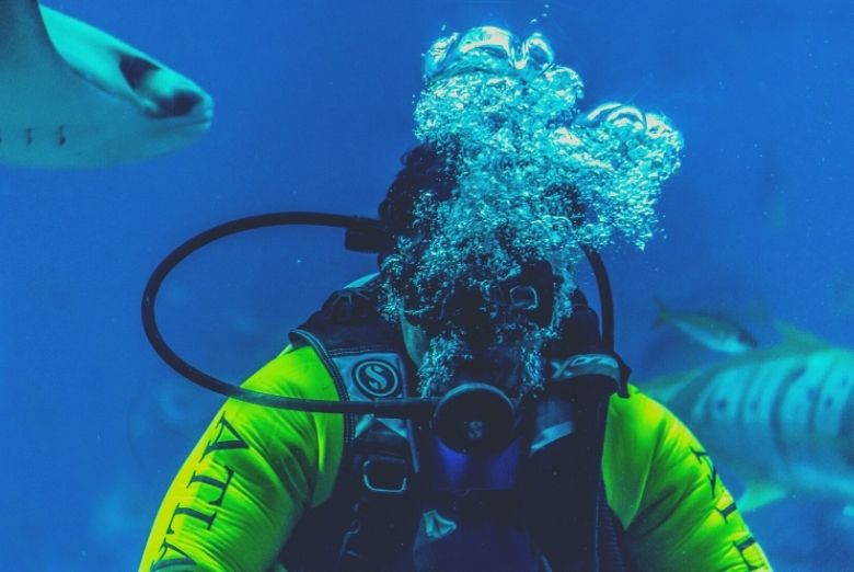 best scuba regulator