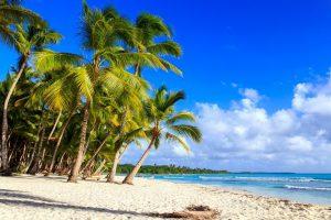 best snorkeling dominican republic
